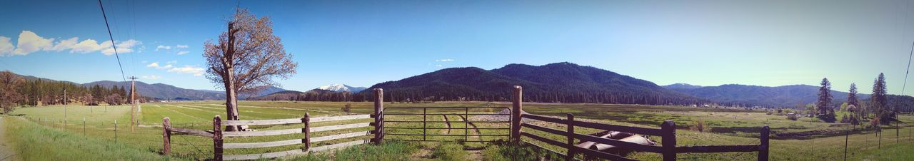 Pasture Cattle Ranch Mountains Northern California Sierra Nevada Mountains Mountain Life Nature Favorite Places Indian Valley Sunshine Green Mountain Rustic Wolf Creek Plumas National Forest Mountain Rural Scene Gate Sky Wooden Post Fence Countryside