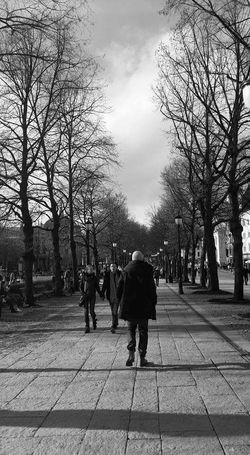 Photography Streetphotography Black & White Lonely Objects Dried Winter Trees Winter Black Suit Urban Life Here Belongs To Me EyeEm Gallery