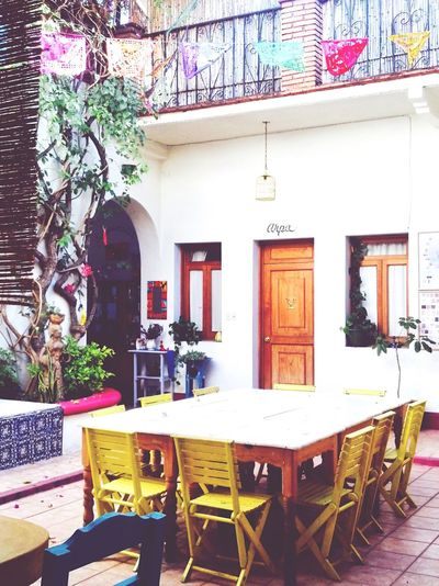 Mexican inner courtyard Table Chair Restaurant Built Structure Architecture No People Building Exterior Dining Table Flower Tree Day Outdoors Nature Yellow Chairs Interior Design Interior Styling