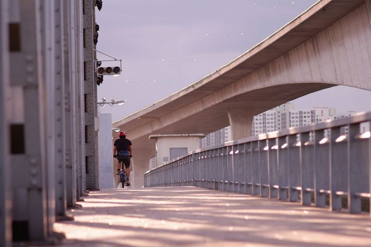 Rear view of man riding bicycle on bridge