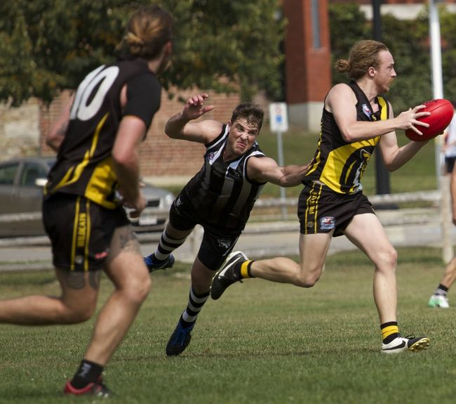 Aussie Rules Hamilton Wildcats Sherrin Adult Amateur Sports American Football - Ball American Football - Sport American Football Player Athlete Aussie Challenge Competition Competitive Sport Day Footy Full Length Helmet Jumper Match - Sport Men Motion Offense - Sporting Position Only Men Outdoors Playing Running Sport Sports Team Sports Uniform Sportsman Sportswear Teamwork Young Adult
