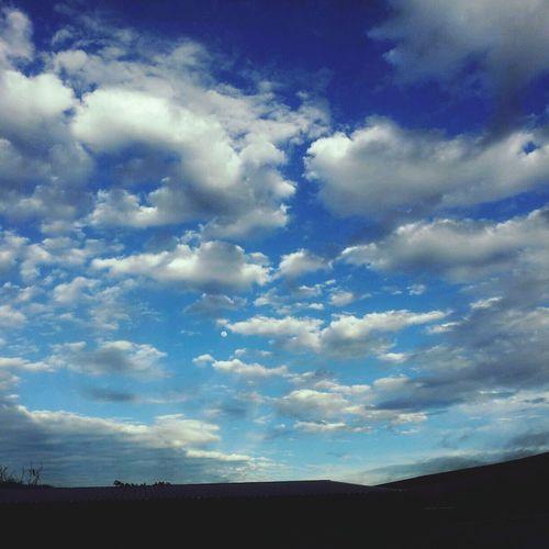 Sky Eye4photography  EyeEm Nature Lover Autumn Colors