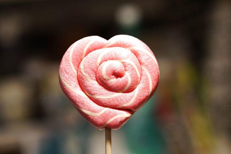 Close-up of pink heart shape lollipop