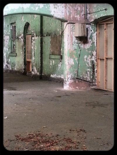 Wallporn Peelingpaint 1870's derelict ballroom at the Abbotsford Convent
