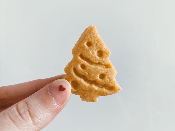 Close-up of hand holding cookies against white background