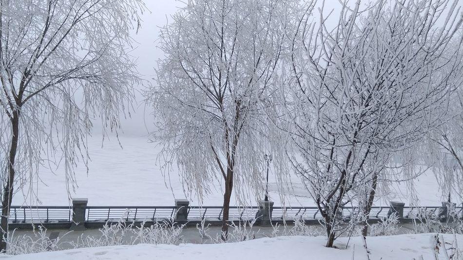 美丽的牡丹江雪