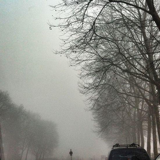 Monza like SilentHill
