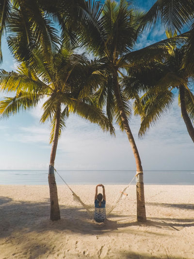 Summer time Exploring Fun Tree Tropical Climate Land Palm Tree Sea Water Beach Sky Sand Horizon Plant Tranquility Scenics - Nature Nature Beauty In Nature Tranquil Scene Day Horizon Over Water Growth No People Outdoors Palm Leaf Coconut Palm Tree