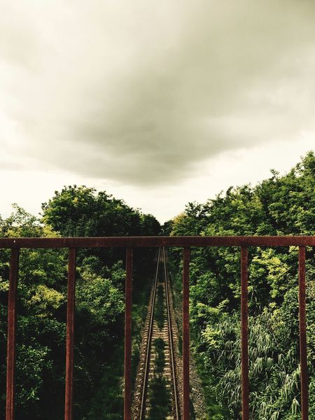 EyeEm Selects Tree Sky No People Growth Day Bridge - Man Made Structure Cloud - Sky Plant Nature Outdoors Built Structure Architecture Beauty In Nature Railway Middleofnowhere Railroad Track Green Color Outdoor Photography Beauty In Nature History Beautiful Hungary Landscape EyeEm Selects