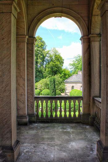 Window Summer 😃