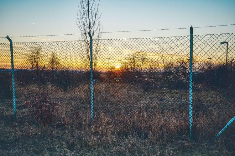 Field seen through chainlink fence