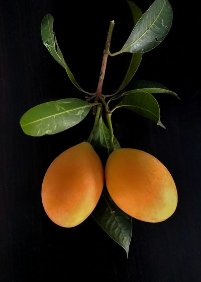 Close-up of fruits against black background