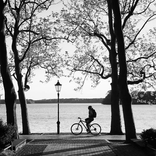 Silhouette Bicycle Blackandwhite City Full Length Land Vehicle Lifestyles Mode Of Transportation Nature One Person Outdoors Plant Real People Riding River Street Transportation Tree Tree Trunk Trunk Water