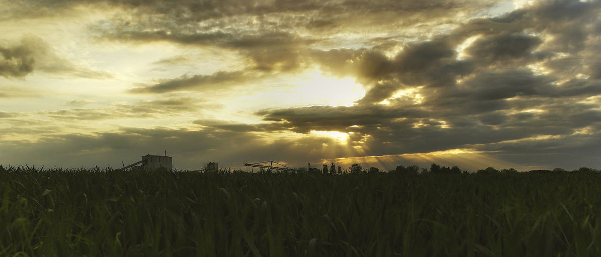 Agriculture Beauty In Nature Cloud Cloud - Sky Cloudy Dramatic Sky Field Grass Growth Idyllic Landscape Nature No People Orange Color Outdoors Overcast Plant Rural Scene Scenics Sky Sun Sunset Tranquil Scene Tranquility Weather