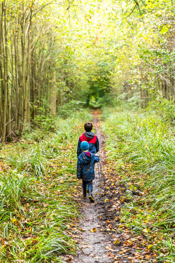 Two boys on footpath in english forest park Autumn Boy English Exploring Foot Footpath Forest Green Narrow Park Two Walking Around