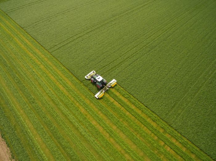 High angle view of working on agricultural field
