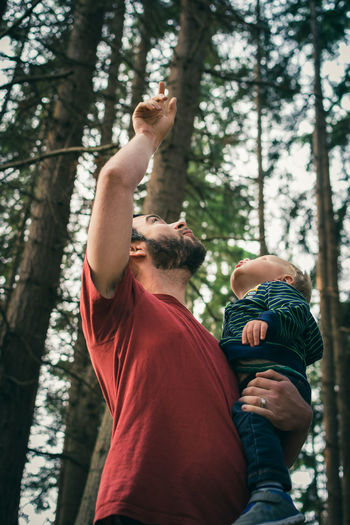 Low angle view of father carrying son while standing in forest