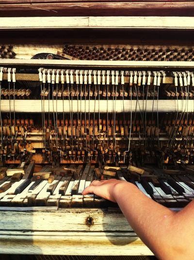 Rotten Piano in