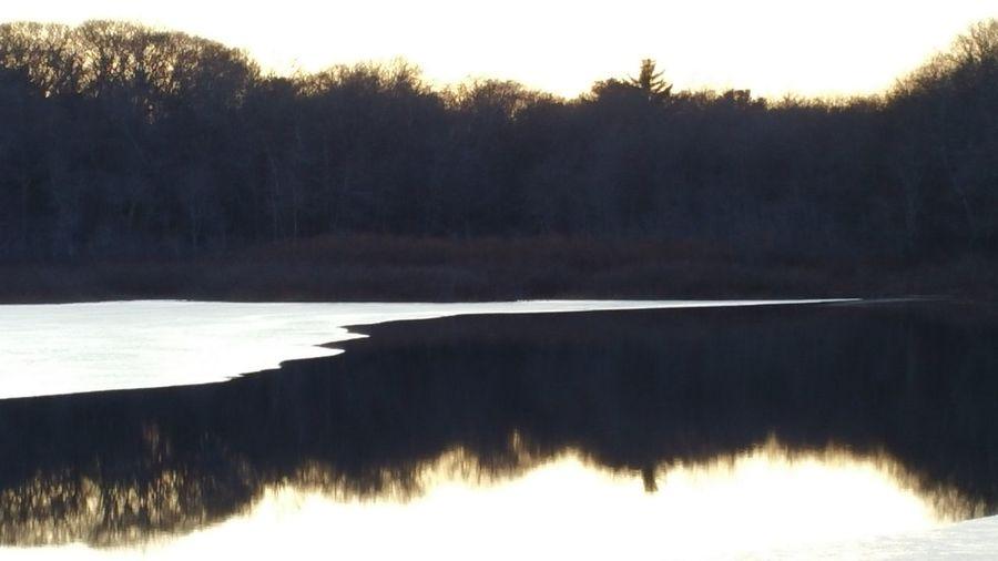 Showcase: February Icey Pond Ice Pond First Herring Brook