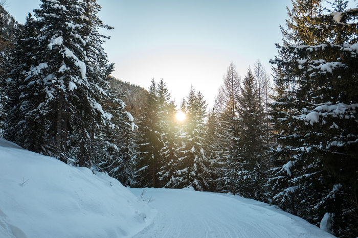 Mountains in Italy Aosta Aostavalley Cold Temperature Landscape Mountain Nature Snow Tranquil Scene Tree Weather Winter An Eye For Travel