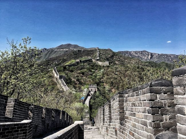 EyeEmNewHere Built Structure Tree Outdoors Mountain My Favourite Place Sky Thegreatwall China Architecture Greatwallofchina Thegreatwallofchina China Beauty The Great Outdoors - 2017 EyeEm Awards