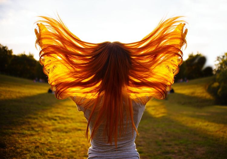 Hairstyle HairExtensions Sunset Girl Woman Red Red Hair Redhead Redhair Lifestyles Life Live person Park Autumn Hair In The Wind Hair Color Female Photography Sunset Rural Scene Standing Redhead Long Hair Portrait Wind Sky Grass Hair Toss Human Back