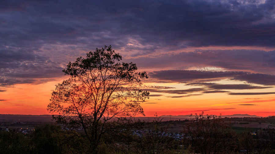 Sonnenuntergang in Südbaden Bare Tree Beauty In Nature Cloud - Sky Day Dramatic Sky Landscape Lone Majestic Nature No People Orange Color Outdoors Scenics Silhouette Sky Sunset Tranquil Scene Tranquility Tree