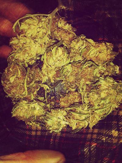 Weed Marijuana Skunk Ganja Super Skunk