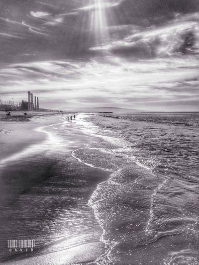 Blackandwhite Monochrome Beach Photography Losangeles