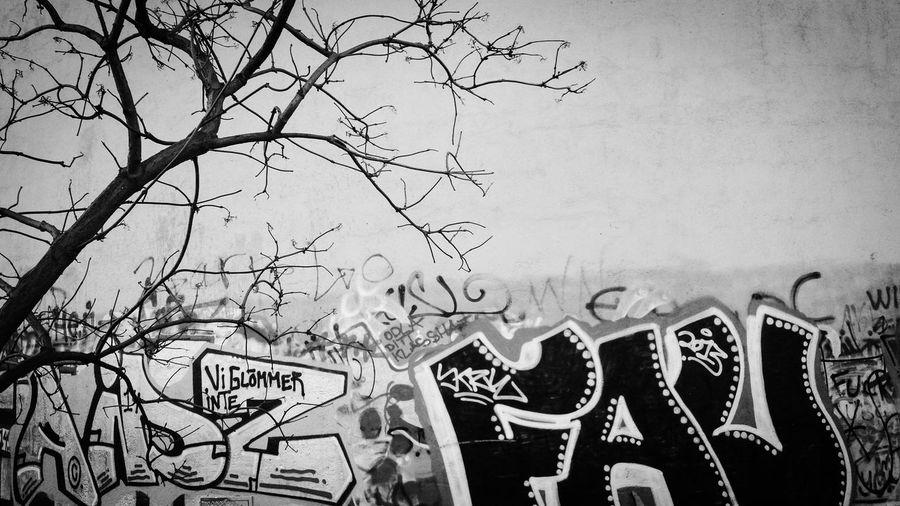 Graffiti NEM