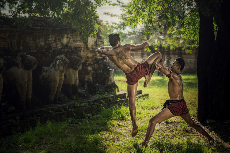 Martial arts of Muay Thai,Thai Boxing at Ayutthaya Historical Park in Ayutthaya, Thailand Combat Ayutthaya Boxing Thailand Warrior Adult Battle Day Full Length Mammal Men Nature Outdoors People Shirtless Strength Traditional Tree Two People Weapon Young Adult