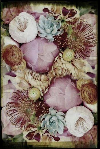 Edit Junkie flowers
