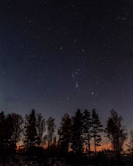 Once upon a star. Open Edit World OpenEdit Europe Hello World Amazing Sky Stars Night EyeEm Best Shots EyeEm Gallery Sweden EyeEm Beautiful Eyemphotography Canon Photography Nature Beauty Nature Photography Naturelovers Nightphotography