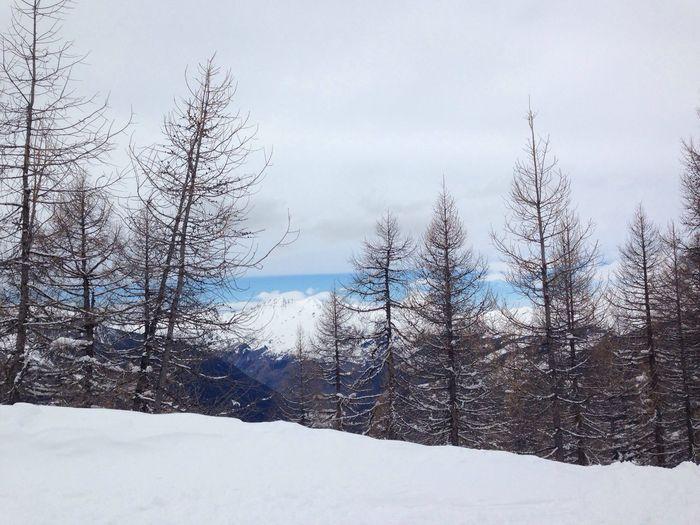 Mountain view Mountains View Snow Trees Snowboarding Skiing France Sainte Foy La Grande Blue Sky