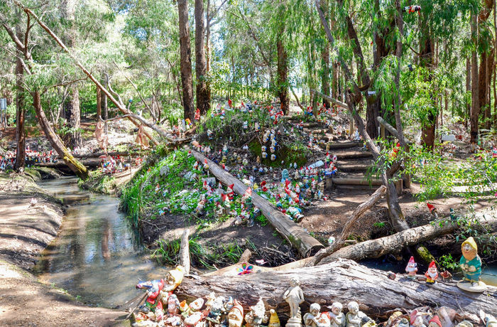 Whimsical Gnomesville forest with steps and creek in the treed landscape in Wellington Mill, Western Australia. Colorful Creek Fantasy Ferguson Valley Figurines  Forest Garden Gnomes Gnomes Gnomesville Landscape Quirky Stairs Steps Steps And Staircases Tourism Tourist Attraction  Travel Destinations Trees Vibrant Color Wellington Mill Western Australia Whimsical Wilderness WoodLand Woods