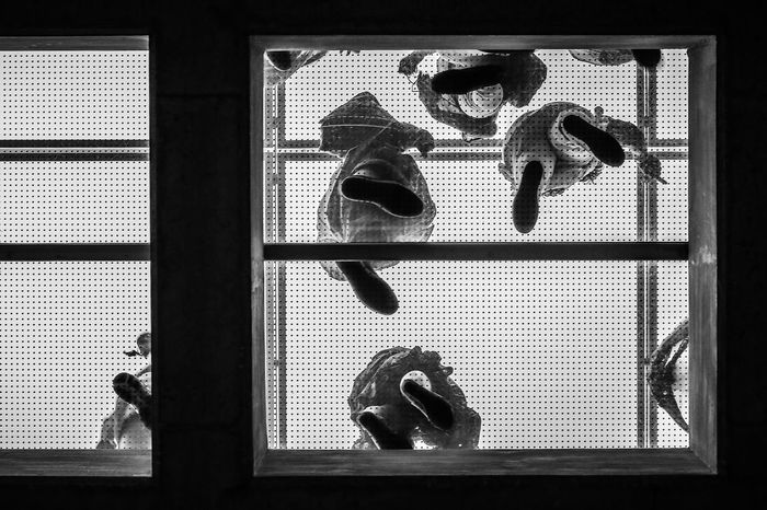 Looking up Acropolis Museum Art Athens B&w Feet Glass Floor Greece Indoors  Looking Up Lookingup Monochrome Under