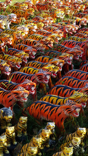 Stuart TIGER SCULPTURE Abundance Animal Animal Themes Animal Wildlife Animals In The Wild Autumn Change Day Full Frame High Angle View Multi Colored Nature No People Orange Color Outdoors Still Life