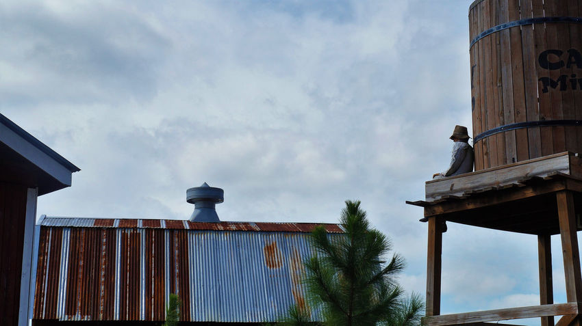 Pumpkin scarecrow man sitting on a wooden water tower Architecture Building Exterior Built Structure Cloud - Sky Day Low Angle View Man Nature No People Outdoors Pumpkin Scarecrow Sitting Sky Tree Water Tower Wooden