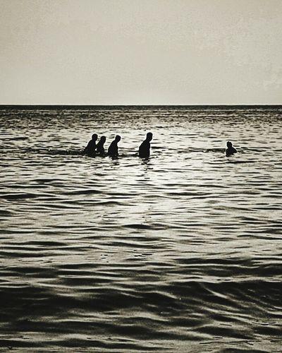 Evolution  Theory Sea Blackandwhite Photography Taking Photos Sunsets
