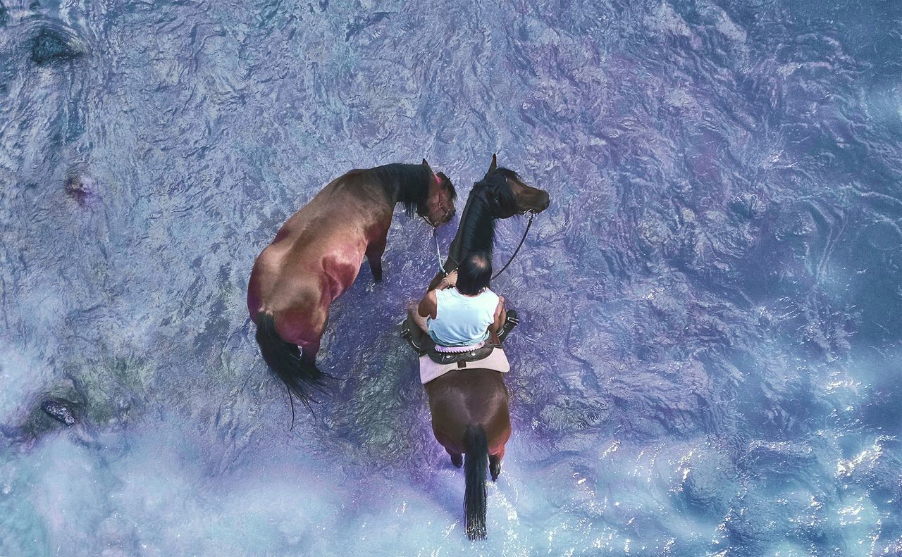 High angle view of cowboy sitting on horse at river