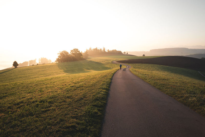 Hiking Morning Beauty In Nature Day Direction Environment Field Grass Land Landscape Lens Flare Mammal Nature Outdoors Plant Real People Road Scenics - Nature Sky Sunlight The Way Forward Tranquil Scene Tranquility Transportation Walking