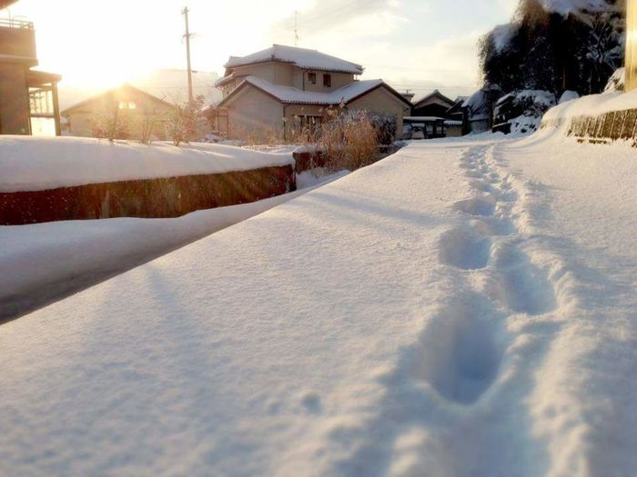 Japan Japan Photography Fukui Prefecture Winter Cold Temperature Snow No People Outdoors Japan Scenery Snow ❄ Snow Day ❄ Snow Day
