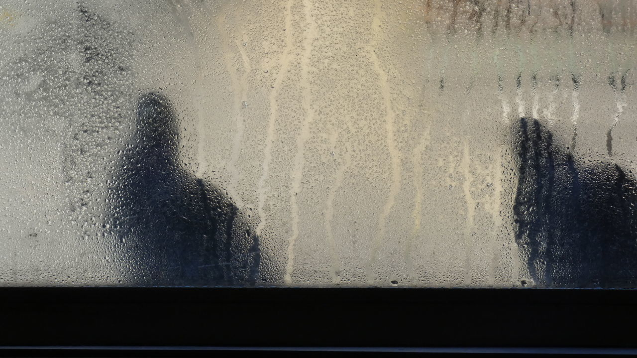 window, day, weather, real people, wet, looking through window, indoors, shadow, water, backgrounds, one person, nature, close-up, people