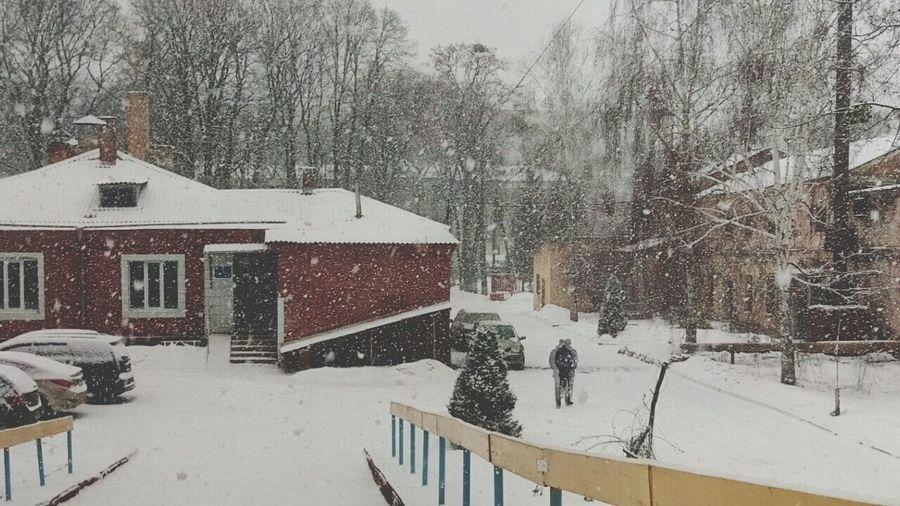 Харьков рулит у него снежный день