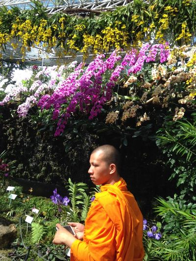 Monk and orchids Orchid Beauty In Nature Day Flower Flower Head Flowering Plant Fragility Freshness Growth Leisure Activity Lifestyles Looking Monk  Nature One Person Outdoors Plant Real People Side View Standing Tree Vulnerability  The Portraitist - 2018 EyeEm Awards