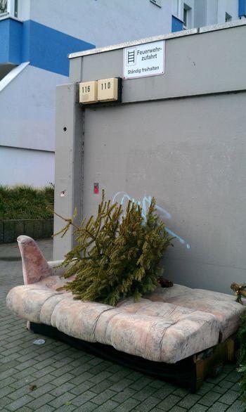 City Trash... Urban Nature Rubbish Christmas
