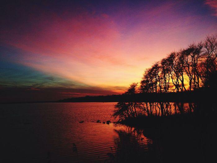 Nature Sunset Skyporn Rhode Island