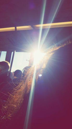 RaysOfLight Rays Of The Sun Rays Sunshine Hairshow eyeem nature lover EyeEm Best Shots Eyem Best Shots Nature_collection Enjoying Life Capture The Moment Deceptively Simple Samsungphotography Phoneography Samsung Galaxy S6 Edge Galaxys6edge S6edgephotography S6edge The Photojournalist - 2016 EyeEm Awards The Portraitist - 2016 EyeEm Awards The Architect - 2016 EyeEm Awards The Photojournalist – 2016 EyeEm Awards From My Point Of View Thearchitect-2016-eyeemawards The Portraitist - The 2016 EyeEm Awards