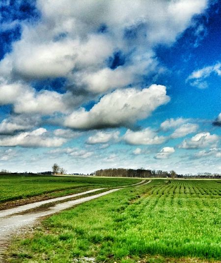 EyeEm Outdoors Green Fields Blue Sky Countryside Dirt Road Simple Life Sunnyday