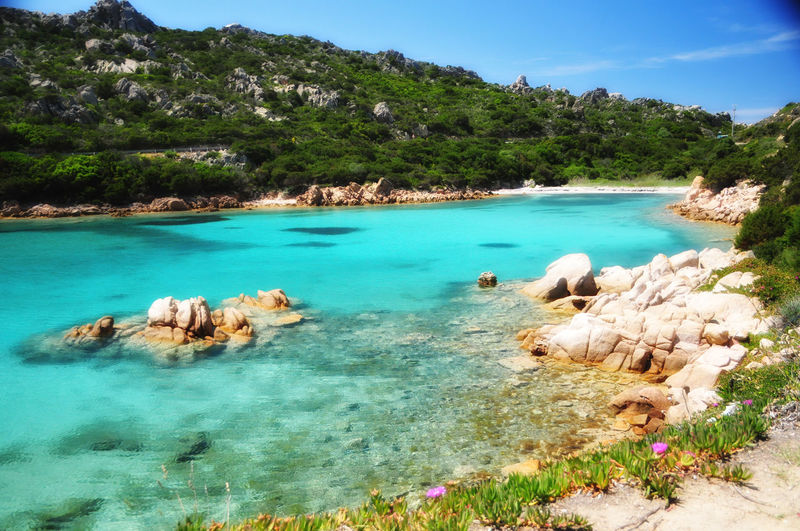 la Maddalena, Sardinia EyeEm Best Shots EyeEmNewHere EyeEm Nature Lover EyeEm Selects EyeEm Nature Lover EyeEm Selects EyeEm Gallery EyeEm Masterclass Eyeemphotography Amazing View Italia, Bella Italia La Maddalena La Maddalena, Sardegna Postcard Sardinia Sardegna Italy  Amazing Sardinia Beauty In Nature Island Of La Maddalena Italia Sardegna La Maddalena, Sardinia Nature Porto Massimo, La Maddalena Sardegna Sardegnaofficial Sardinia Sardinia,italy Scenics Sky Water EyeEmNewHere A New Beginning